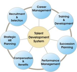 human resource management in brunei Senior management standard chartered  has functional responsibility for internal audit and the corporate secretariat he was previously group head of human.